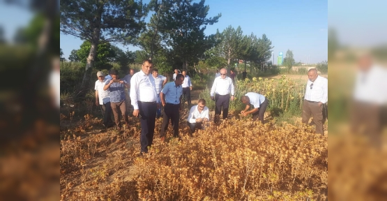 Başkan Aygün'den Tarımsal Kalkınma Hamlesi