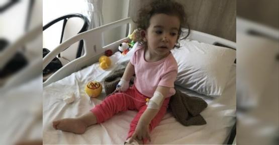 Uçak Kazasında Körfezli  Anne Kız da Yaralandı