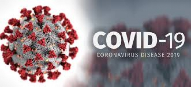 Bir Yılda 103 Covid-19 Kurbanı