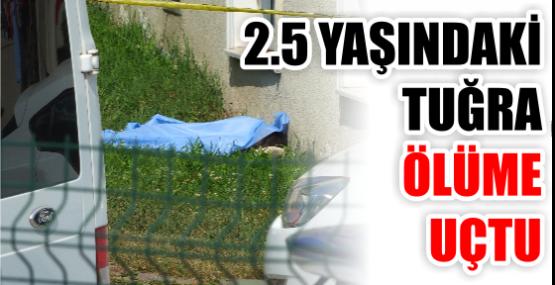 2.5 yaşında tuğra ölüme Uçtu