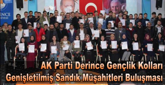 AK Parti Derince Gençlik Kolları Genişletilmiş Sandık Müşahitleri Buluşması