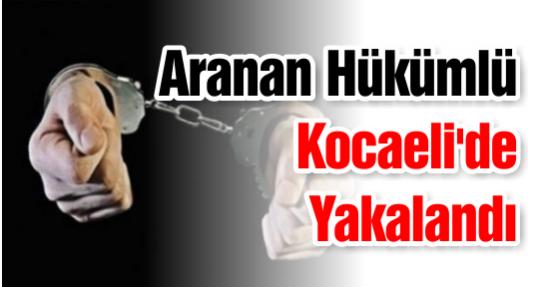 Aranan Hükümlü Kocaeli'de Yakalandı