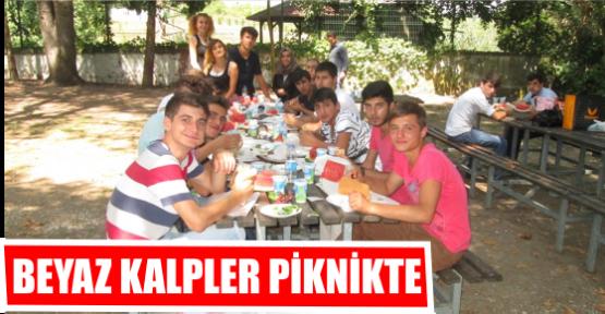 BEYAZ KALPLER PİKNİKTE