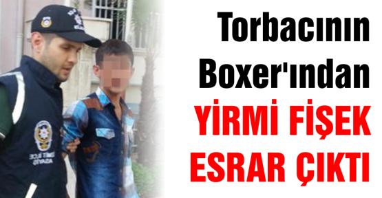 BONZAİ'Yİ Boxer'ına saklamış