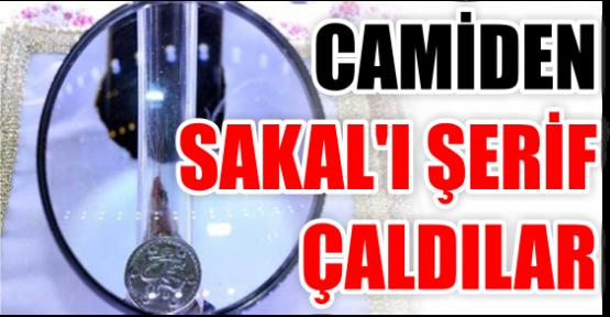 CAMİDEN SAKAL'I ŞERİF ÇALDILAR