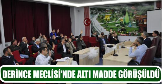 DERİNCE MECLİSİ'NDE ALTI MADDE GÖRÜŞÜLDÜ