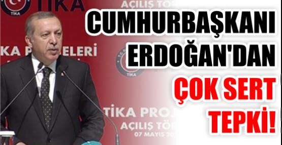 Erdoğan: 'Siz kimin bağından kimi kovuyorsunuz'