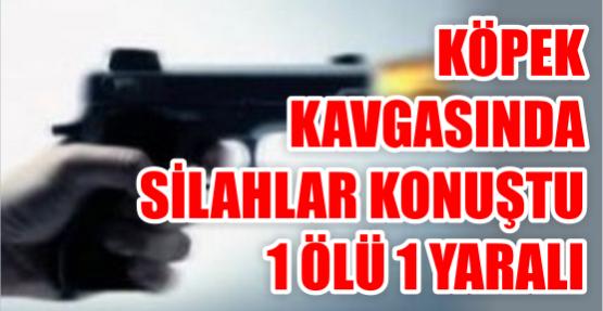 İzmit'te köpek gezdirme kavgası: 1 ölü 1 yaralı