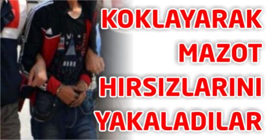 Jandarma 'koklayarak' hırsızları yakaladı