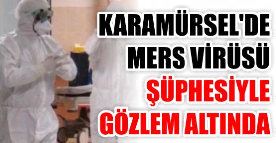 Karamürsel'de MERS alarmı!