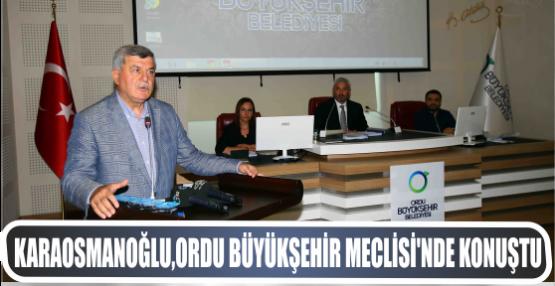Karaosmanoğlu, Ordu Büyükşehir Meclisi'nde konuştu