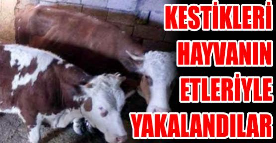 Kestikleri hayvanın etleriyle yakalandılar