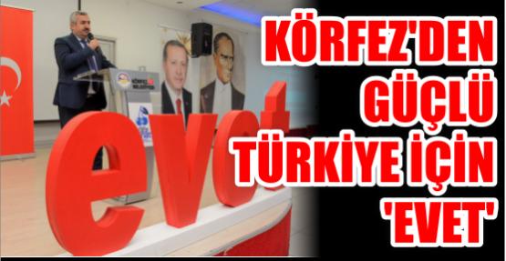 Körfez'den güçlü Türkiye için 'evet'
