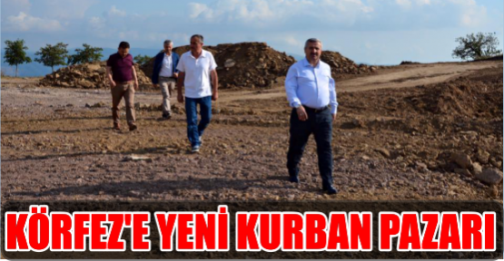 KÖRFEZ'E YENİ KURBAN PAZARI