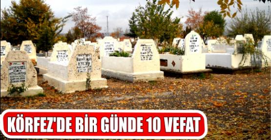 KÖRFZ'DE BİR GÜNDE 10 VEFAT