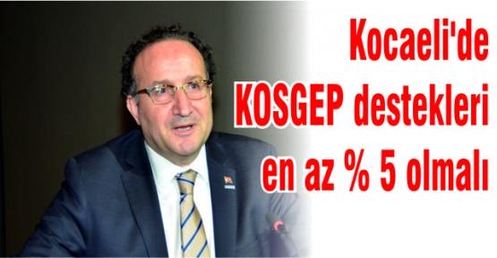 """"""" KOSGEB Destekleri Kocaeli'de en az yüzde 5 olmalıdır"""""""