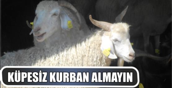 KÜPESİZ KURBAN ALMAYIN