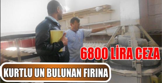 KURTLU UN BULUNAN FIRINA 6800 LİRA CEZA