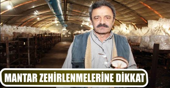 MANTAR ZEHİRLENMELERİNE DİKKAT