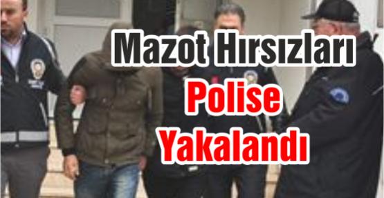 Mazot Hırsızları Polise Yakalandı