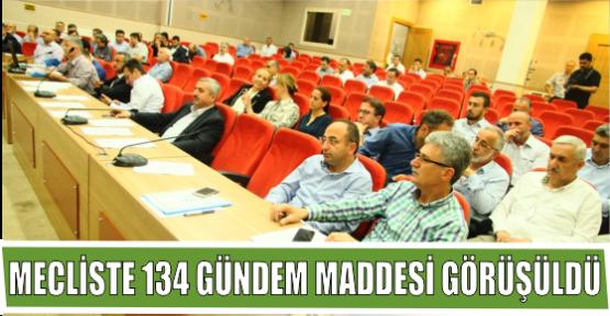 MECLİSTE 134 GÜNDEM MADDESİ GÖRÜŞÜLDÜ