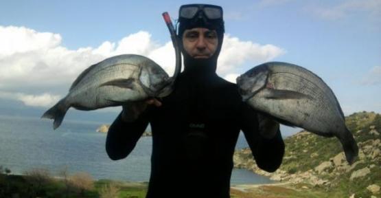 Serbest dalışçıların yeni gözdesi: Körfez