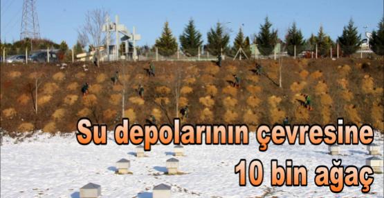 Su depolarının çevresine 10 bin ağaç