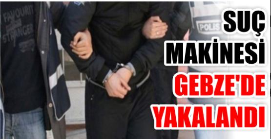 SUÇ MAKİNESİ GEBZE'DE YAKALANDI