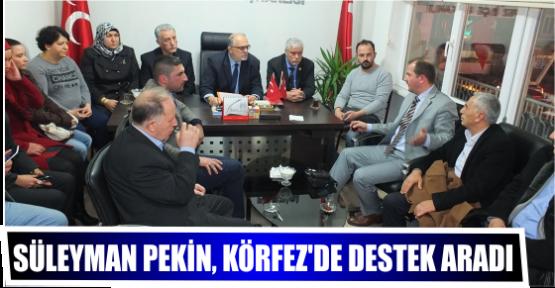Süleyman Pekin, Körfez'de Destek  Aradı