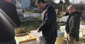 Başkan Turan, Bal Üreticilerini Ziyaret Etti