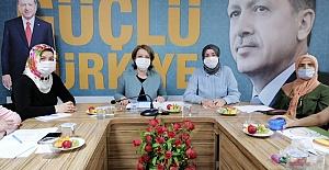 Yasemin Özdemir, Körfezin Toplantısına...