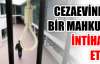 Cezaevinde bir mahkum intihar etti
