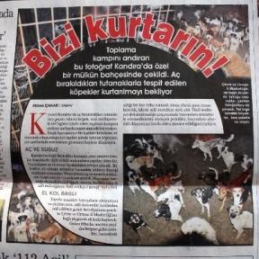 Türkiye Bu Haberi Konuşuyor!!!