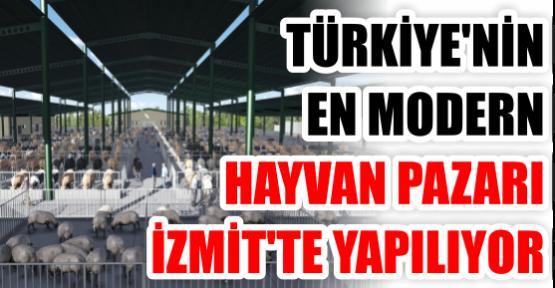TÜRKİYE'NİN EN MODERN HAYVAN PAZARI İZMİT'TE YAPILIYOR