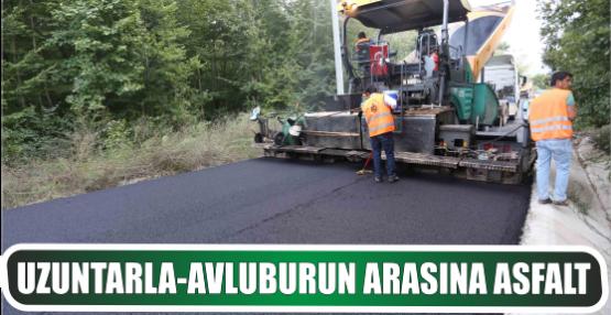 Uzuntarla-Avluburun arasına asfalt
