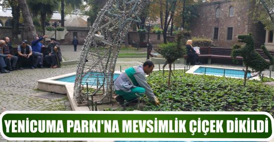 YENİCUMA PARKI'NA MEVSİMLİK ÇİÇEK DİKİLDİ