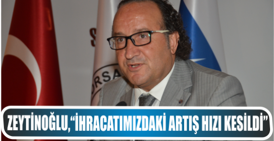 "Zeytinoğlu, ""İhracatımızdaki artış hızı kesildi"""